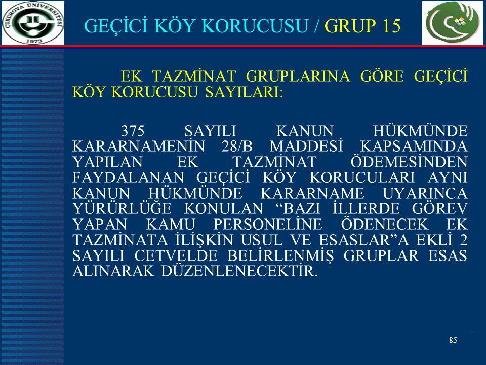 GEÇİCİ KÖY KORUCUSU / GRUP 15