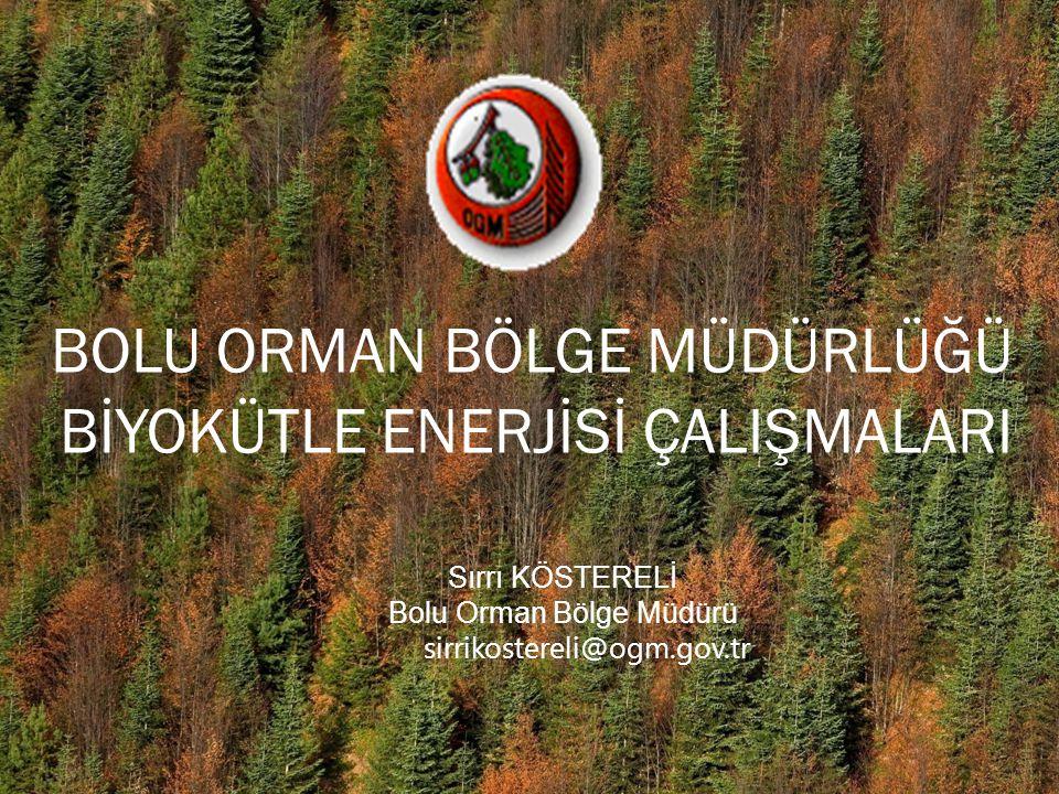Bolu Orman Bölge Müdürü
