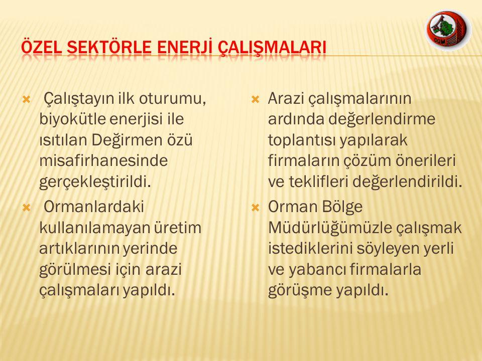 ÖZEL SEKTÖRLE ENERJİ ÇALIŞMALARI