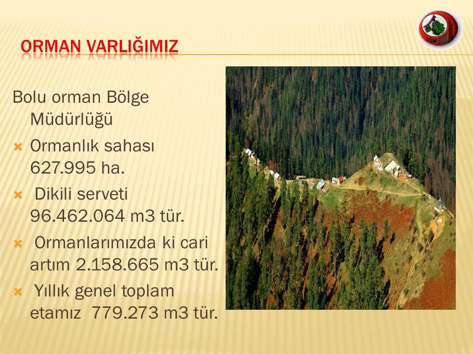 ORMAN VARLIĞIMIZ Bolu orman Bölge Müdürlüğü. Ormanlık sahası 627.995 ha. Dikili serveti 96.462.064 m3 tür.