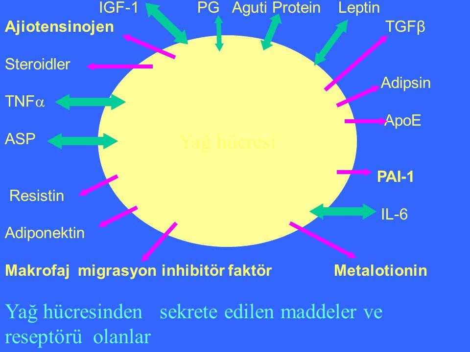 Yağ hücresinden sekrete edilen maddeler ve reseptörü olanlar