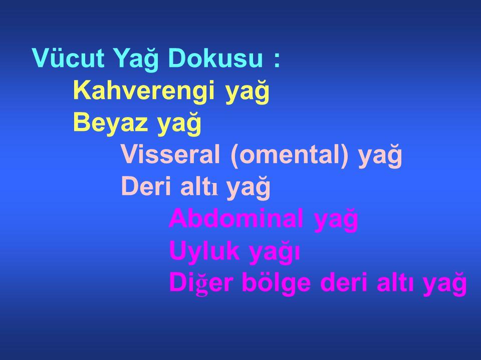 Vücut Yağ Dokusu : Kahverengi yağ. Beyaz yağ. Visseral (omental) yağ. Deri altı yağ. Abdominal yağ.