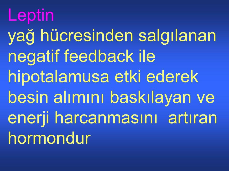 Leptin yağ hücresinden salgılanan negatif feedback ile hipotalamusa etki ederek besin alımını baskılayan ve enerji harcanmasını artıran hormondur.