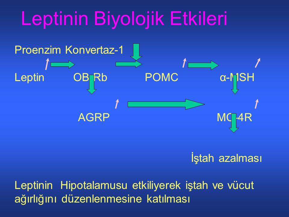 Leptinin Biyolojik Etkileri