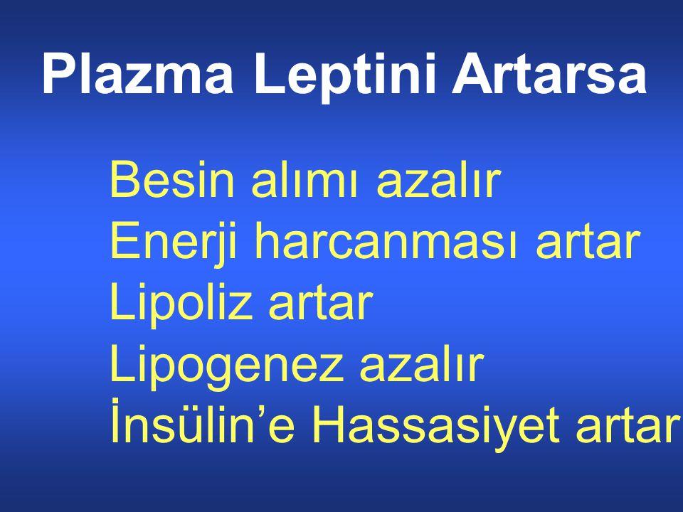 Plazma Leptini Artarsa