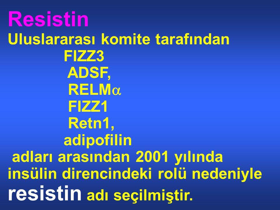 Resistin Uluslararası komite tarafından FIZZ3 ADSF, RELMa FIZZ1 Retn1,