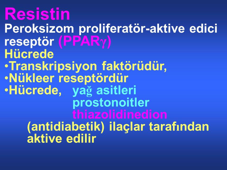 Resistin Peroksizom proliferatör-aktive edici reseptör (PPARγ) Hücrede