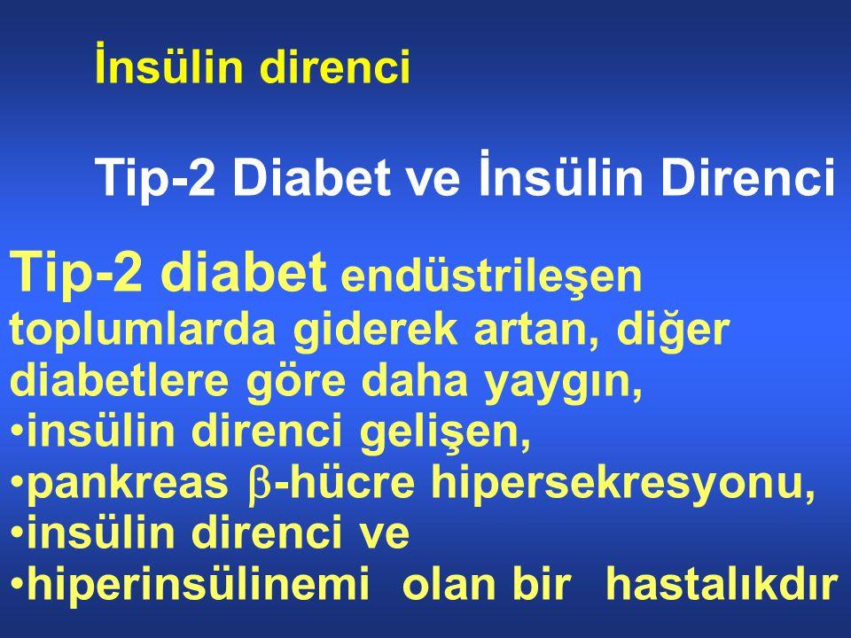 İnsülin direnci Tip-2 Diabet ve İnsülin Direnci. Tip-2 diabet endüstrileşen toplumlarda giderek artan, diğer diabetlere göre daha yaygın,