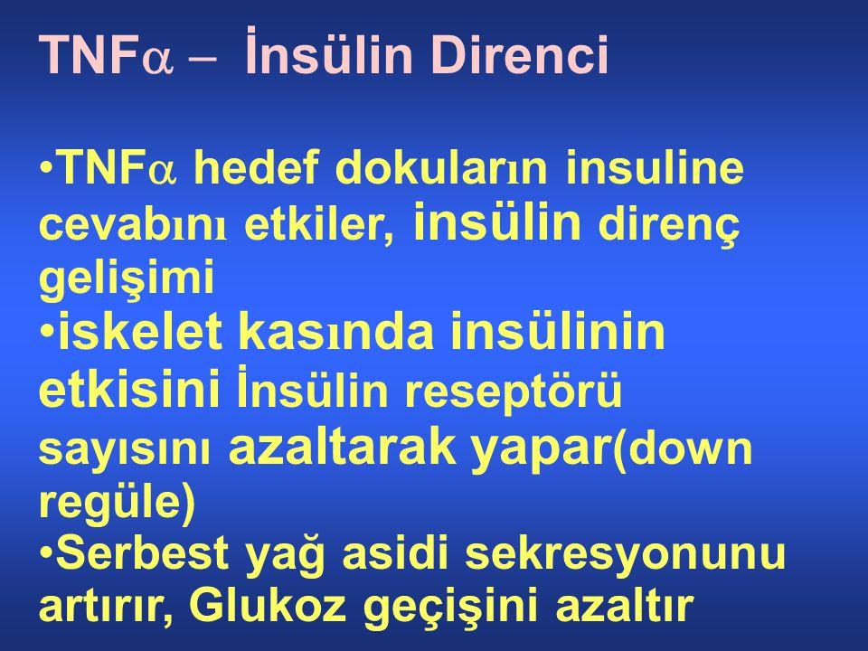 TNFa - İnsülin Direnci TNFa hedef dokuların insuline cevabını etkiler, insülin direnç gelişimi.
