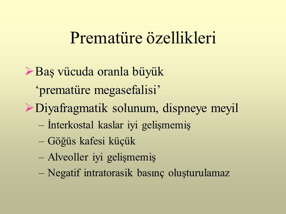 Prematüre özellikleri