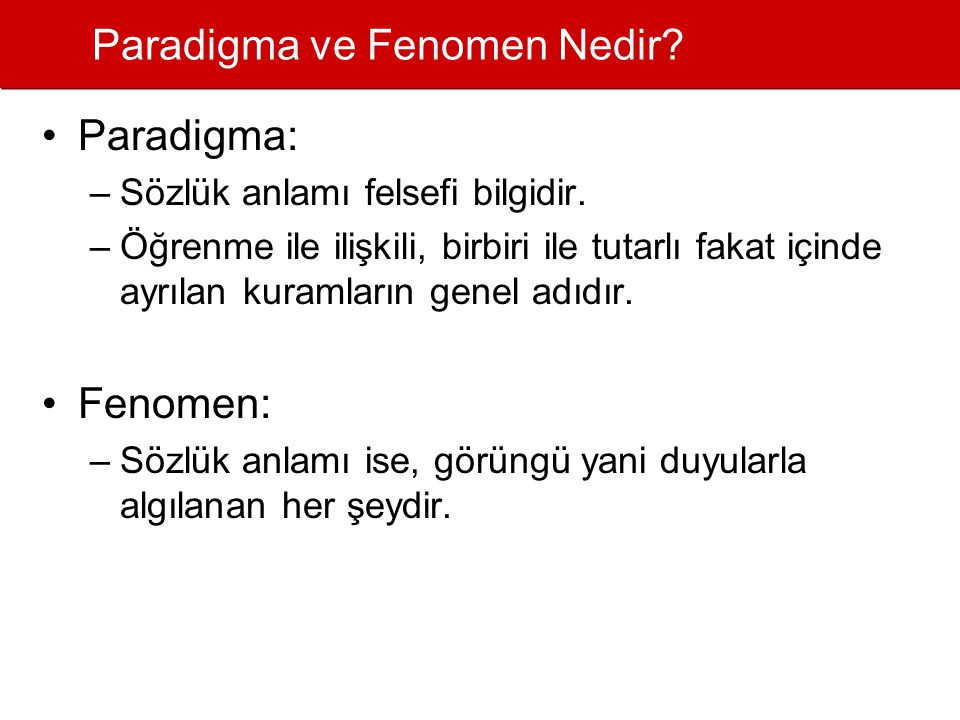 Paradigma ve Fenomen Nedir