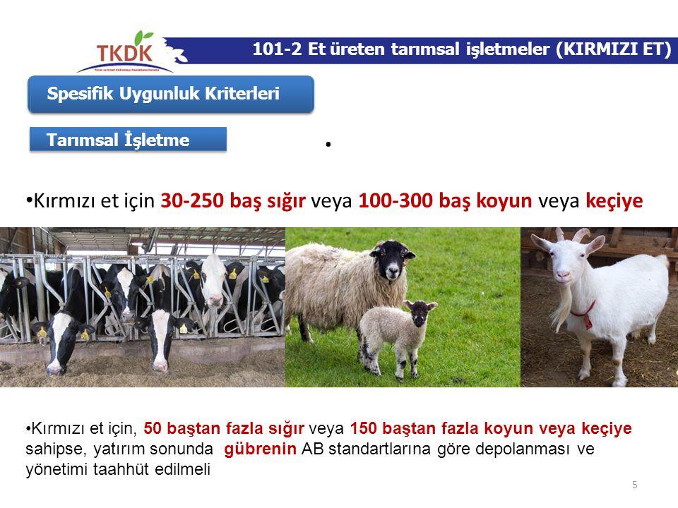 . Kırmızı et için 30-250 baş sığır veya 100-300 baş koyun veya keçiye