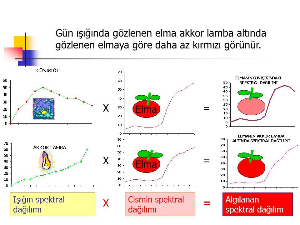 Gün ışığında gözlenen elma akkor lamba altında gözlenen elmaya göre daha az kırmızı görünür.