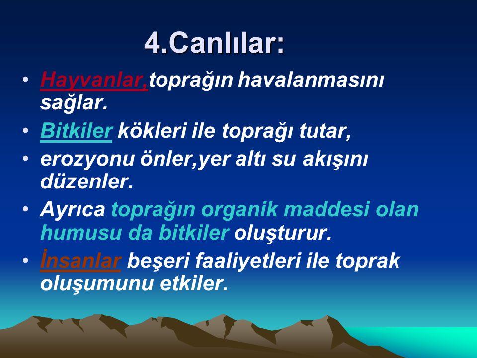 4.Canlılar: Hayvanlar,toprağın havalanmasını sağlar.