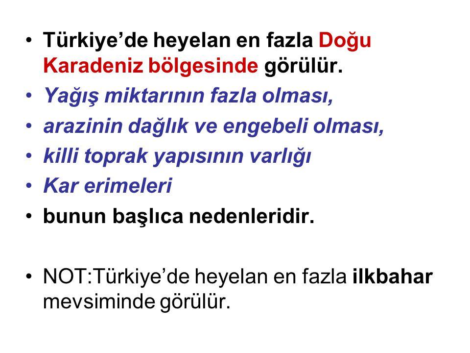 Türkiye'de heyelan en fazla Doğu Karadeniz bölgesinde görülür.