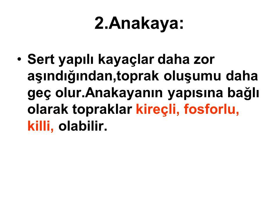 2.Anakaya: