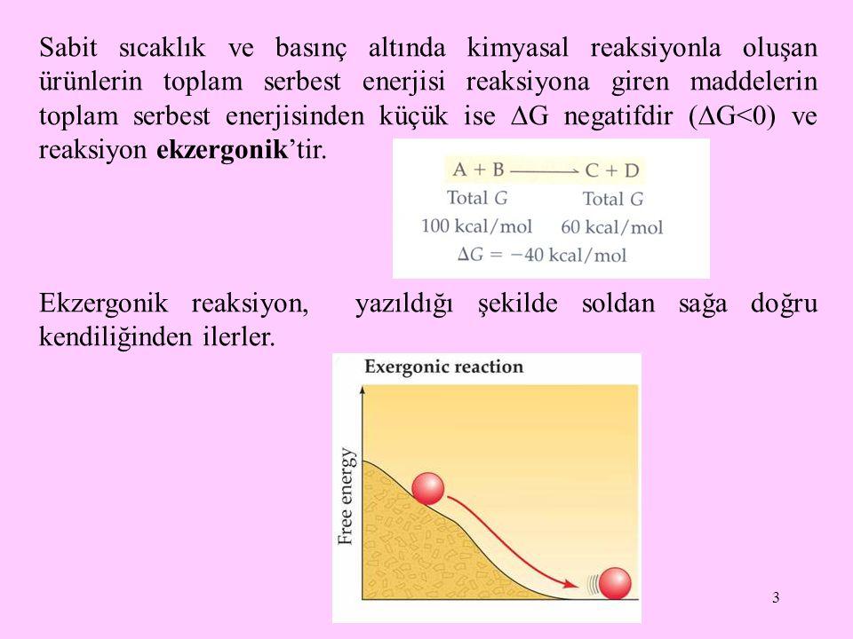 Sabit sıcaklık ve basınç altında kimyasal reaksiyonla oluşan ürünlerin toplam serbest enerjisi reaksiyona giren maddelerin toplam serbest enerjisinden küçük ise G negatifdir (G<0) ve reaksiyon ekzergonik'tir.