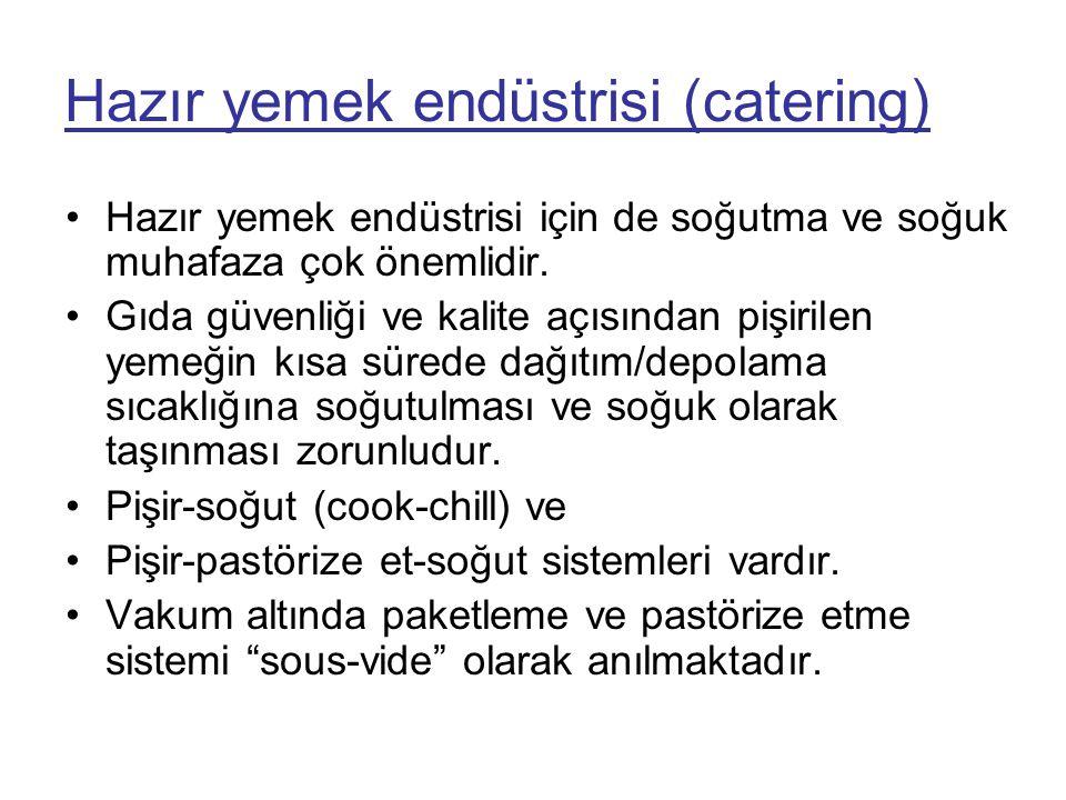 Hazır yemek endüstrisi (catering)