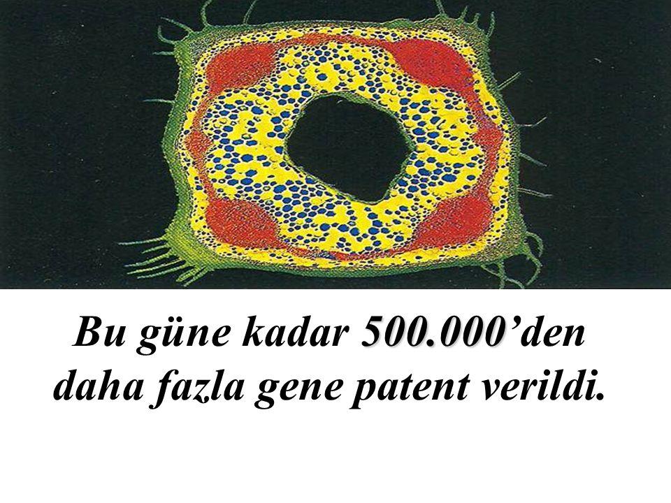 Bu güne kadar 500.000'den daha fazla gene patent verildi.