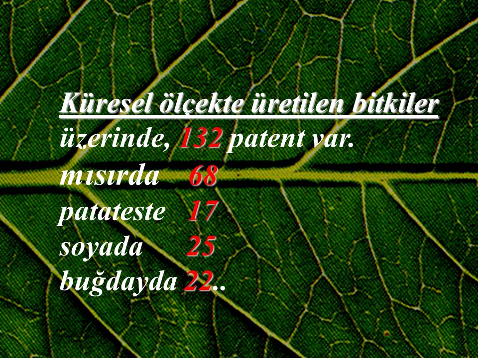 mısırda 68 Küresel ölçekte üretilen bitkiler üzerinde, 132 patent var.