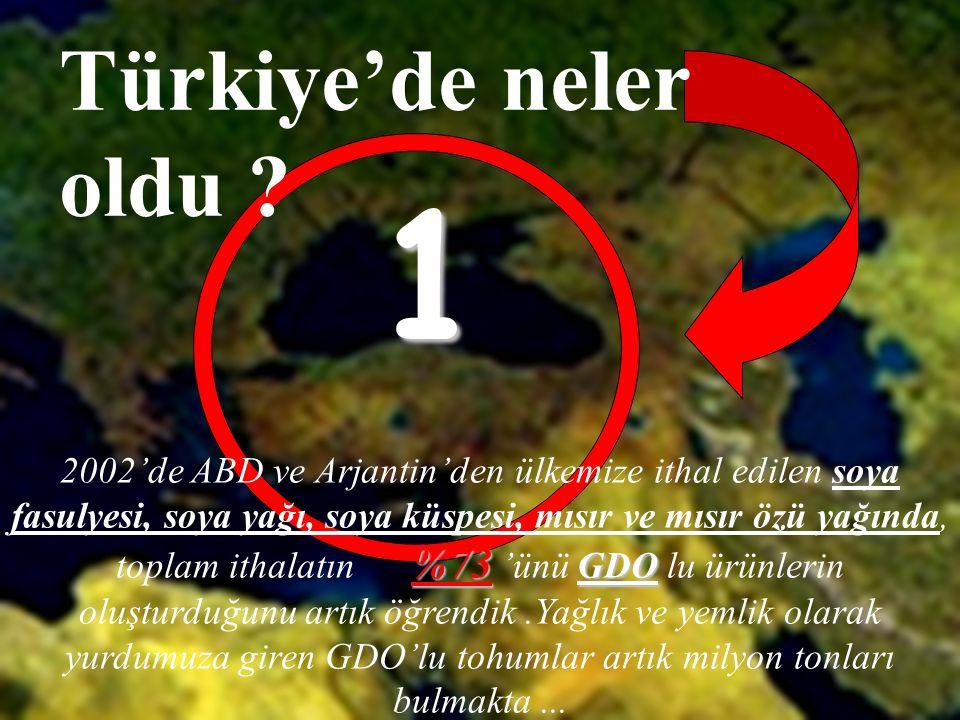 Türkiye'de neler oldu 1.