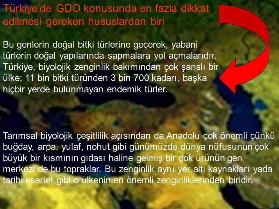 Türkiye'de GDO konusunda en fazla dikkat