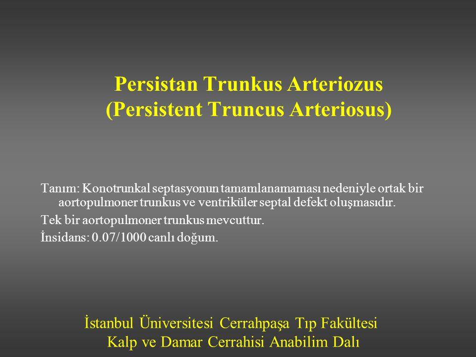 Persistan Trunkus Arteriozus (Persistent Truncus Arteriosus)