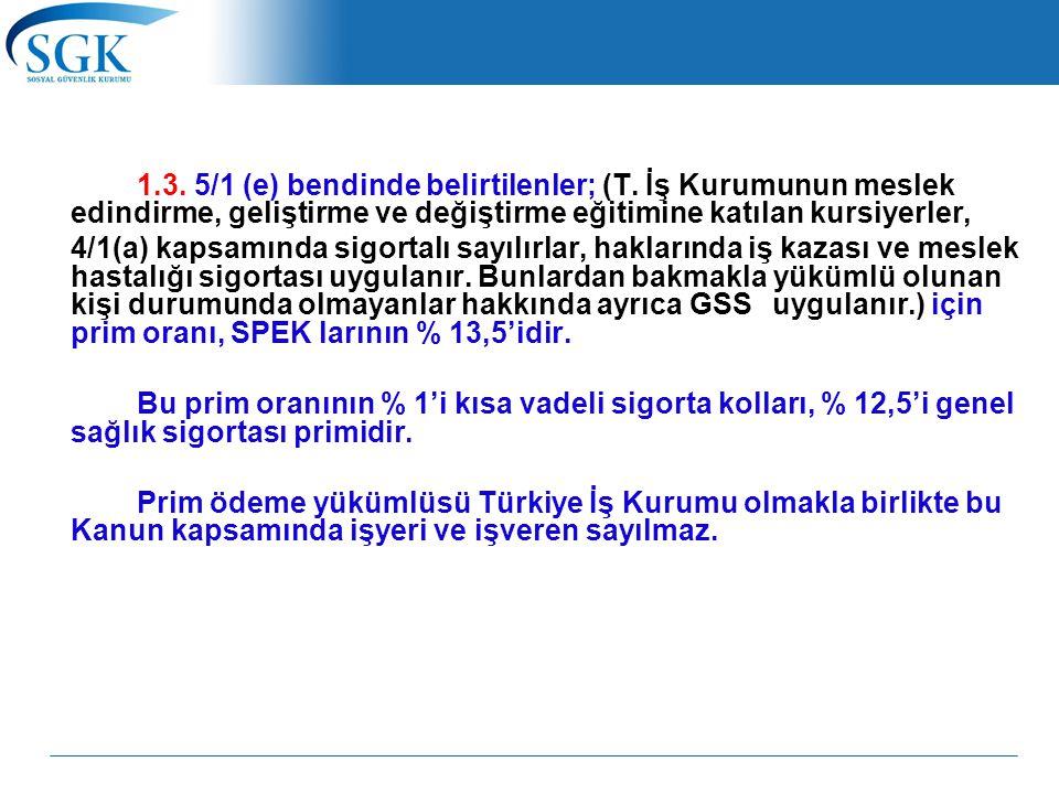 1. 3. 5/1 (e) bendinde belirtilenler; (T