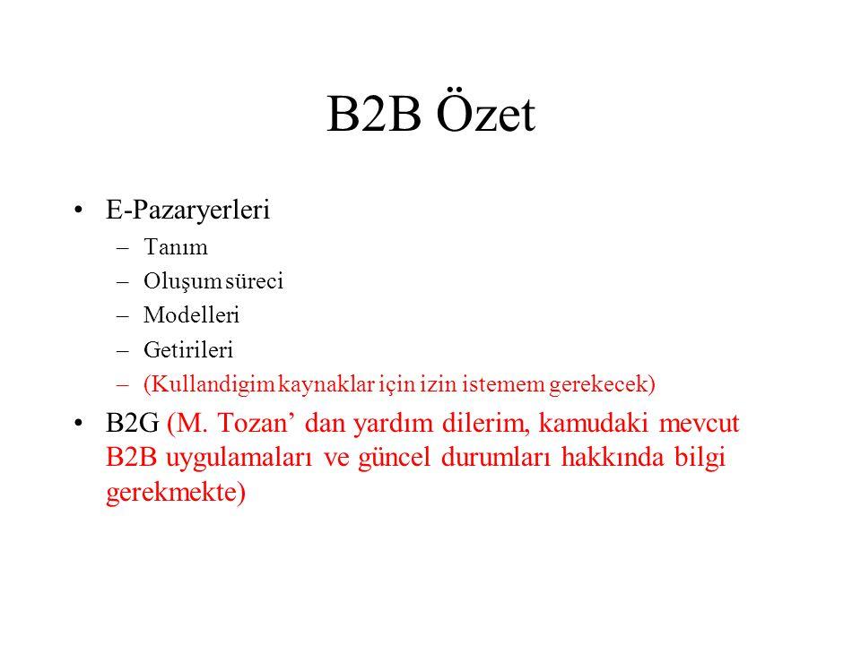 B2B Özet E-Pazaryerleri