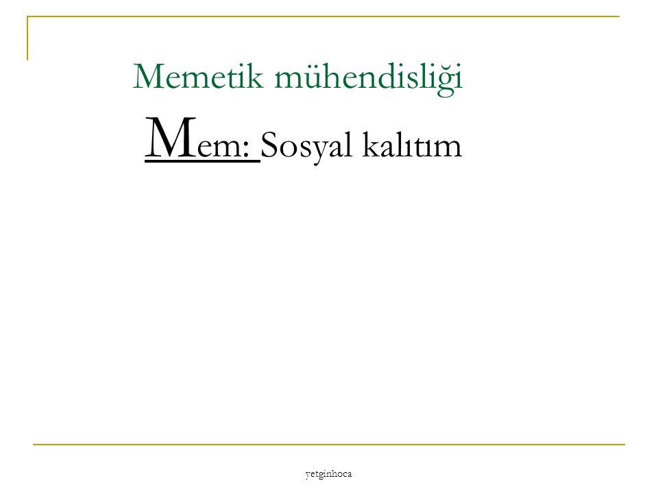 Memetik mühendisliği Mem: Sosyal kalıtım