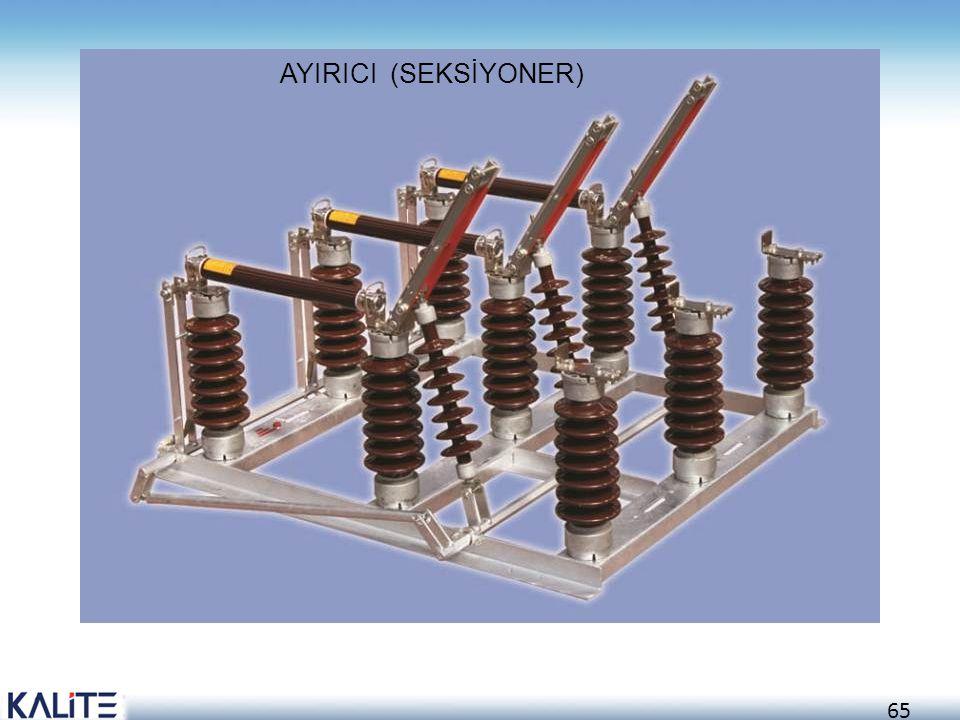AYIRICI (SEKSİYONER)