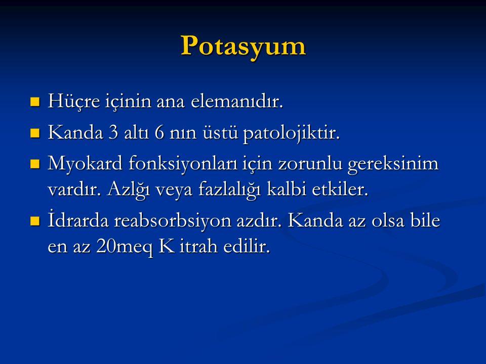 Potasyum Hüçre içinin ana elemanıdır.