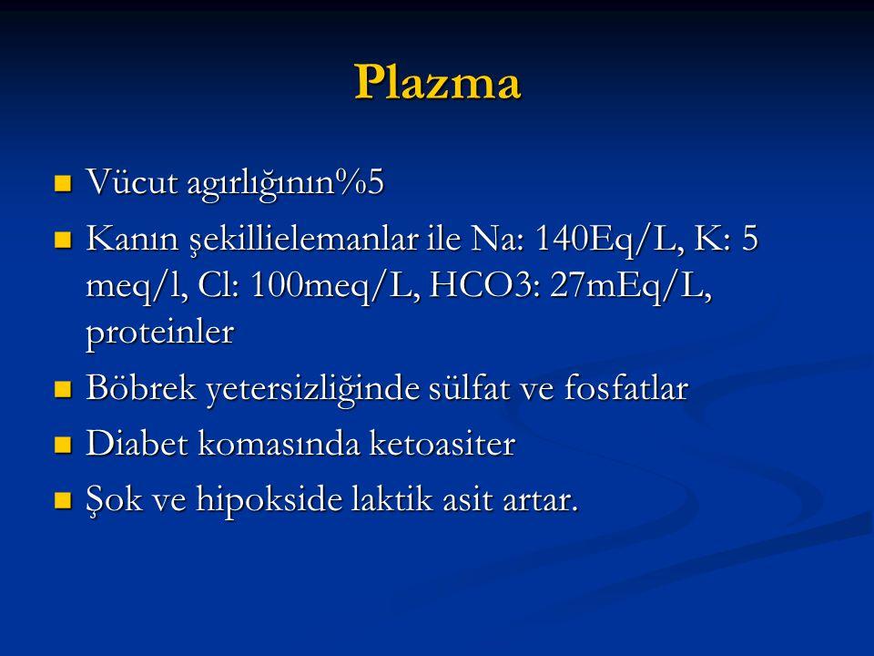 Plazma Vücut agırlığının%5