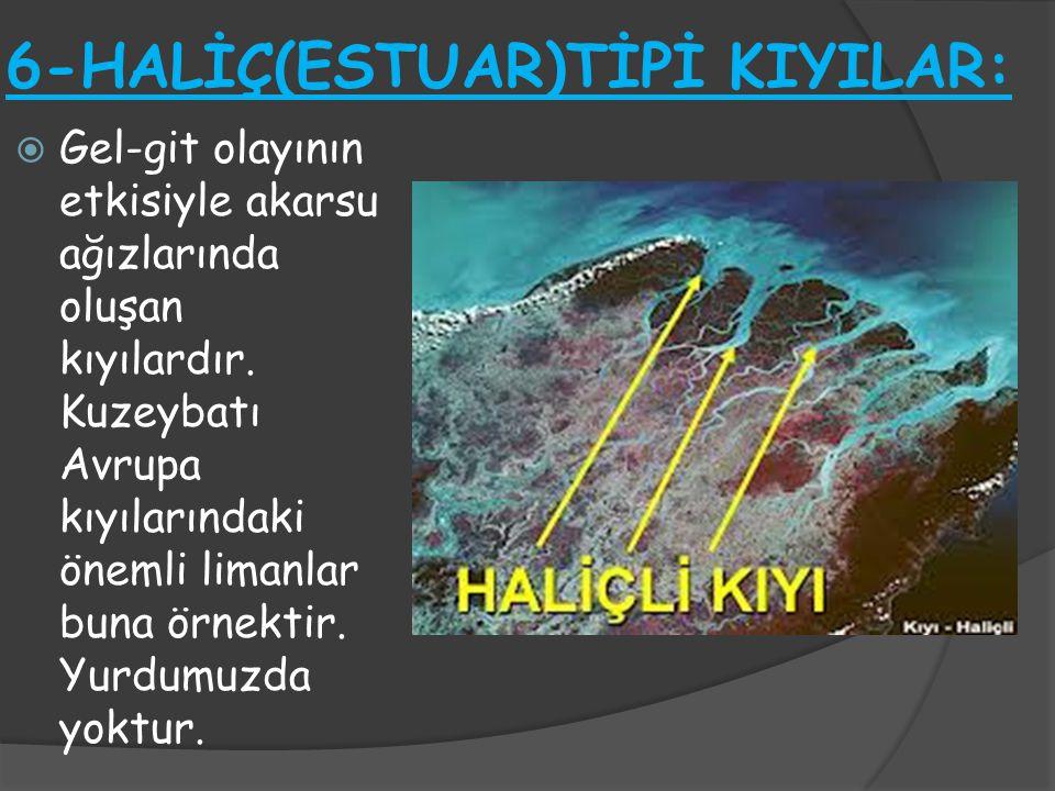 6-HALİÇ(ESTUAR)TİPİ KIYILAR: