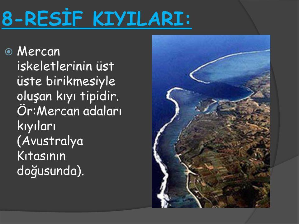 8-RESİF KIYILARI: Mercan iskeletlerinin üst üste birikmesiyle oluşan kıyı tipidir.