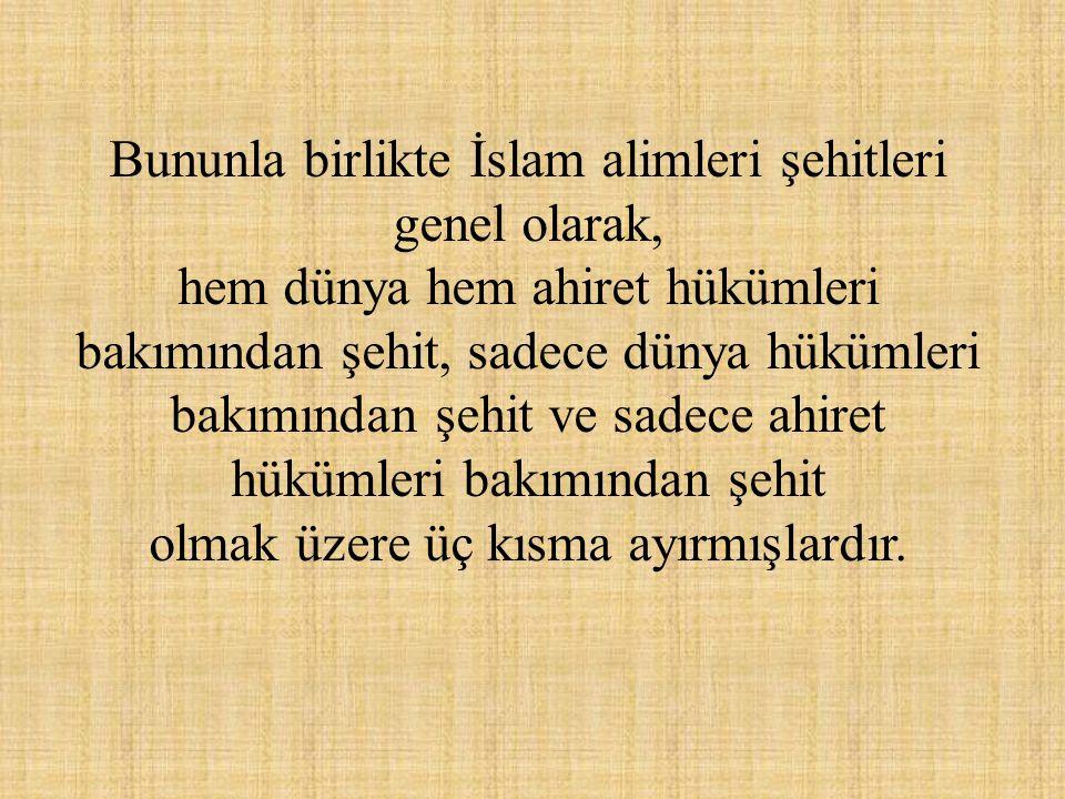 Bununla birlikte İslam alimleri şehitleri genel olarak,