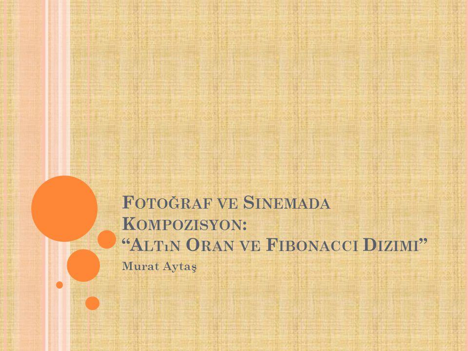 Fotoğraf ve Sinemada Kompozisyon: Altın Oran ve Fibonacci Dizimi