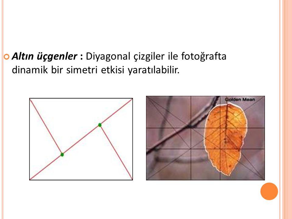 Altın üçgenler : Diyagonal çizgiler ile fotoğrafta dinamik bir simetri etkisi yaratılabilir.
