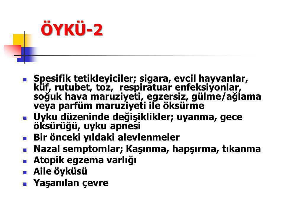 ÖYKÜ-2