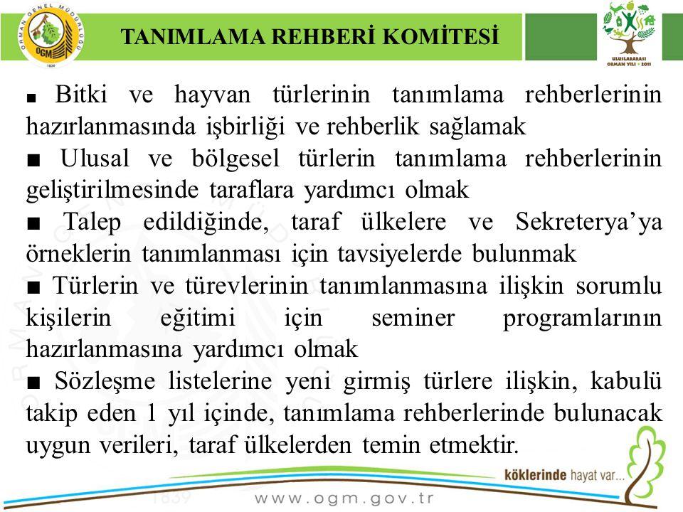 TANIMLAMA REHBERİ KOMİTESİ