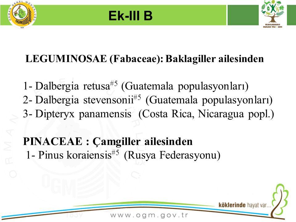Ek-III B 1- Dalbergia retusa#5 (Guatemala populasyonları)