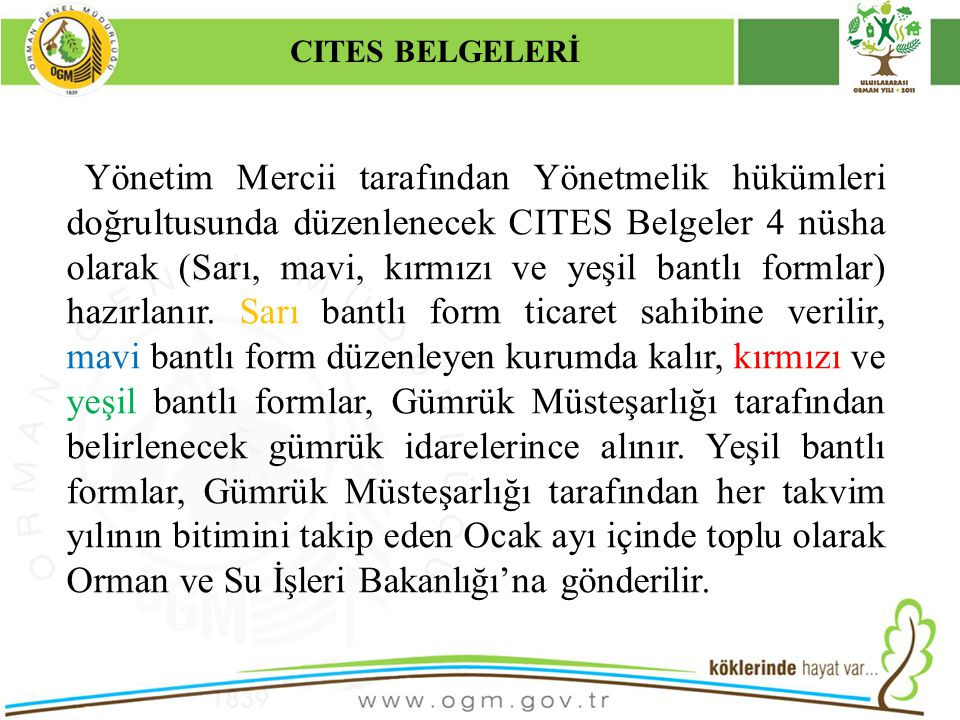 CITES BELGELERİ Kurumsal Kimlik