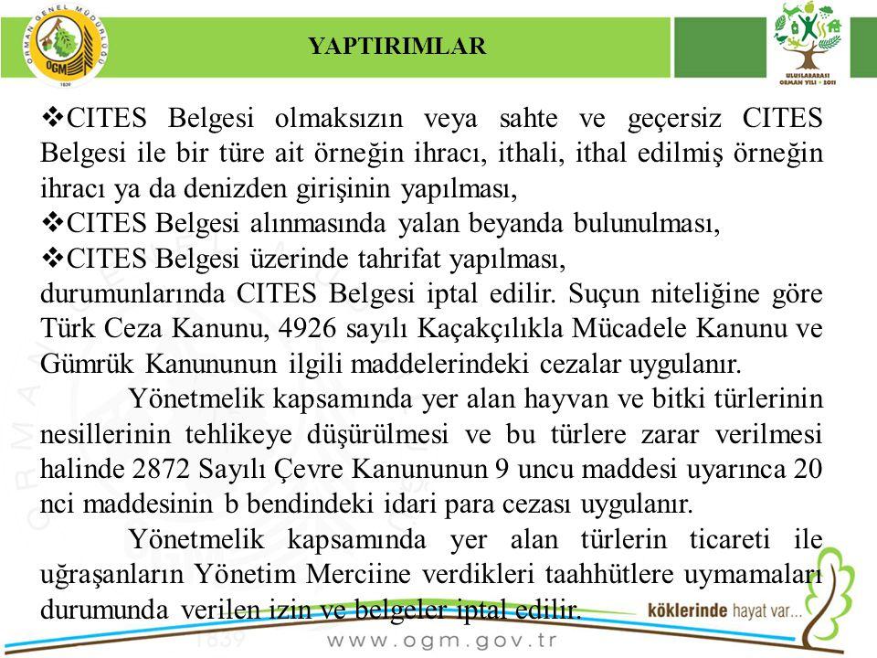 CITES Belgesi alınmasında yalan beyanda bulunulması,