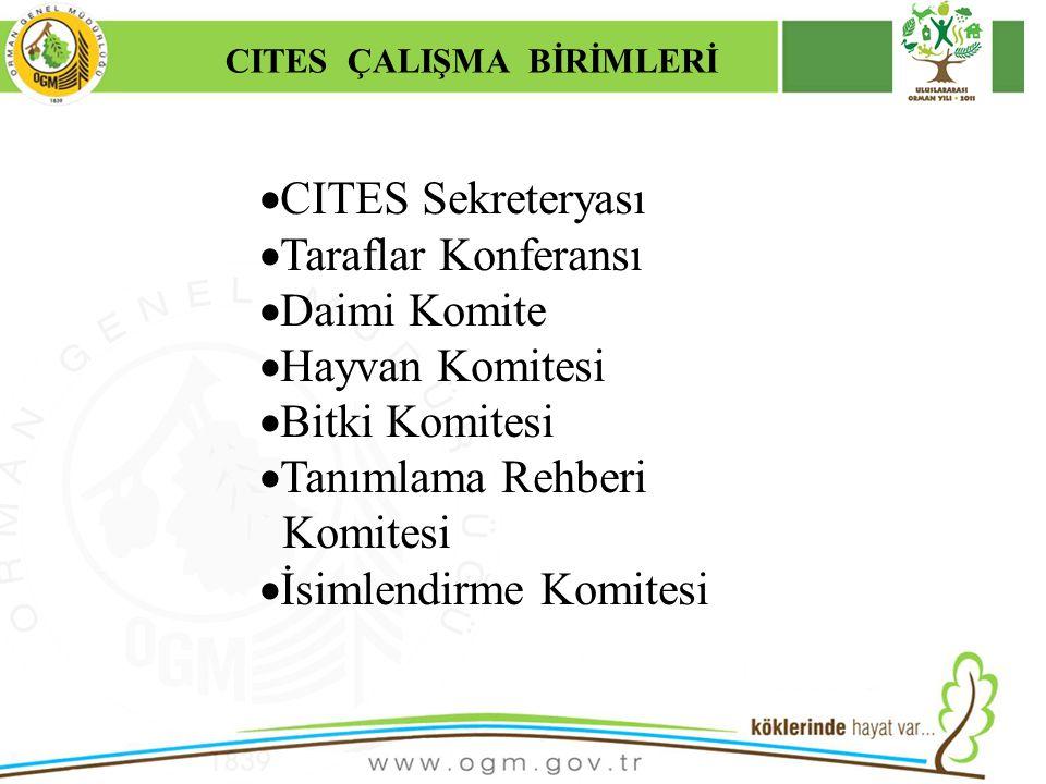 CITES ÇALIŞMA BİRİMLERİ