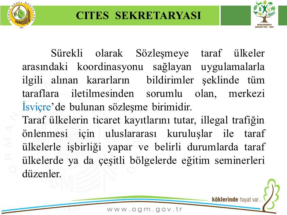CITES SEKRETARYASI Kurumsal Kimlik. 16/12/2010.