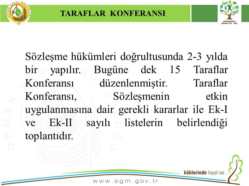 TARAFLAR KONFERANSI Kurumsal Kimlik. 16/12/2010.
