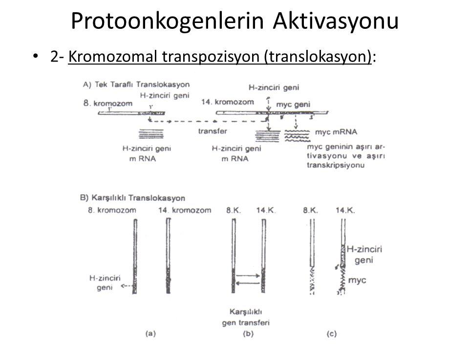 Protoonkogenlerin Aktivasyonu