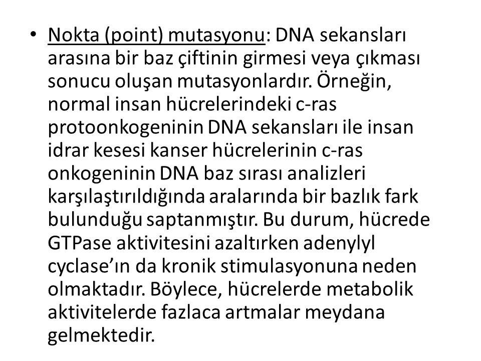 Nokta (point) mutasyonu: DNA sekansları arasına bir baz çiftinin girmesi veya çıkması sonucu oluşan mutasyonlardır.