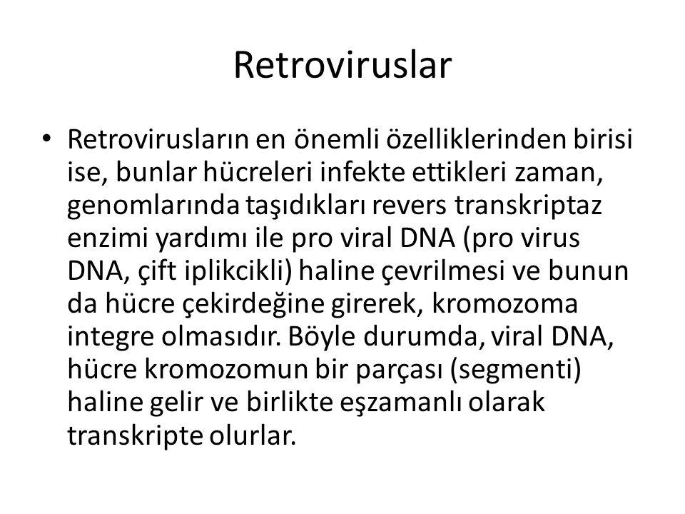 Retroviruslar