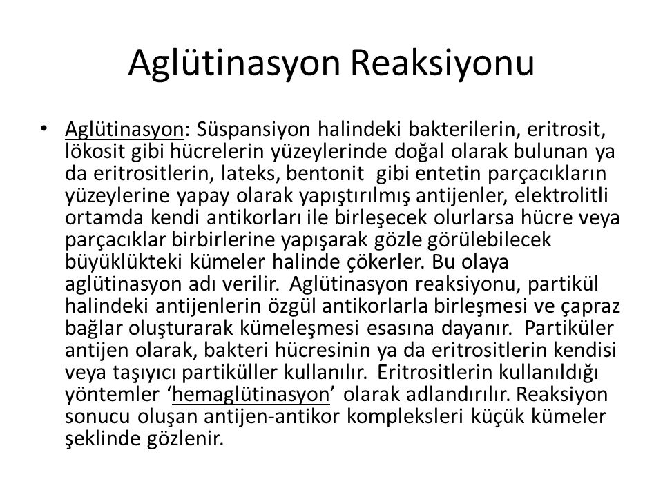 Aglütinasyon Reaksiyonu